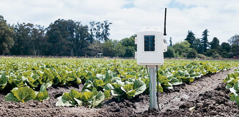 Leaf Wetness Soil Moisture Station