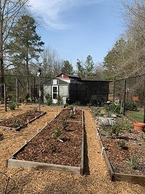 ショーンの庭園